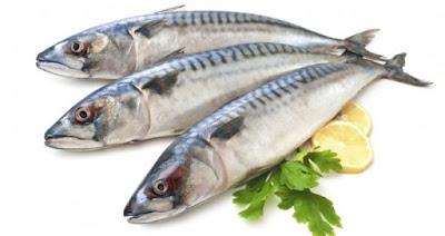 Mackerel Fish Sea Food Nutrition Comparison