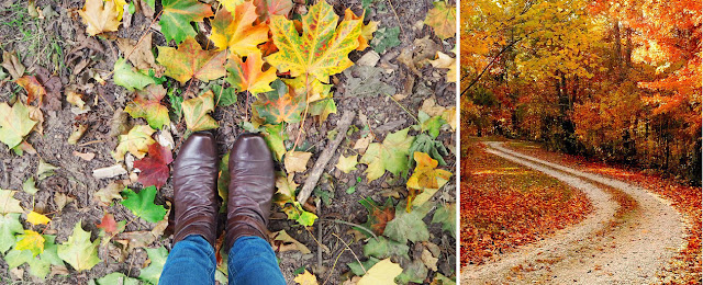 My Favourite Things About Autumn: Woodland Walks | Katie Kirk Loves