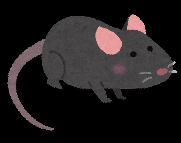 黒いマウスハツカネズミのイラスト かわいいフリー素材集 いらすとや