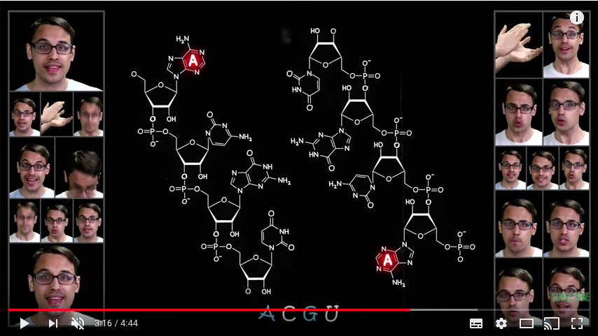 Varietats: The Molecular Shape of You by A Capella Science