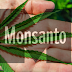 Monsanto is Trying to Patent the Marijuana Genome! - THESE People are Trying to Stop Them.