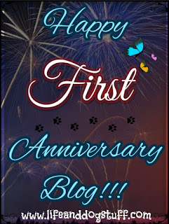 Happy First Anniversary Blog!!!