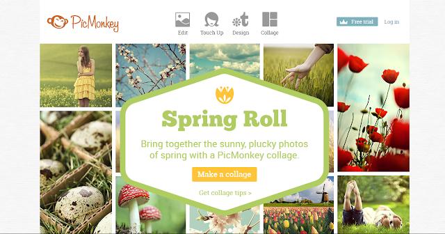 picmonkey site de montage retouche photo