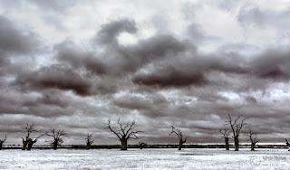 mundon oaks