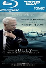 Sully: Hazaña en el Hudson (2016) BDRip m720p / BRRip 720p