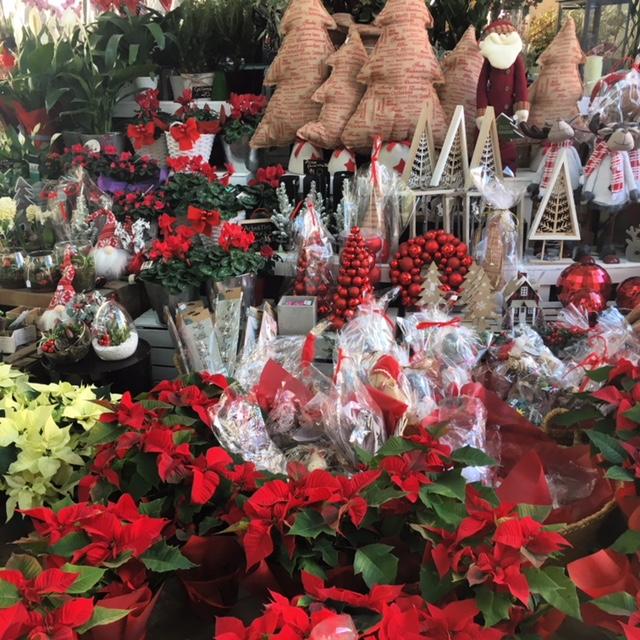 3 planazos para disfrutar esta Navidad en Valencia