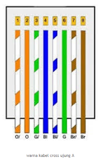 Susunan warna kabel straight dan crossover
