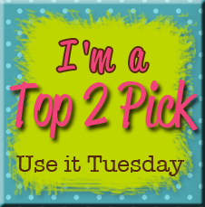 Use it Tuesday Top 2