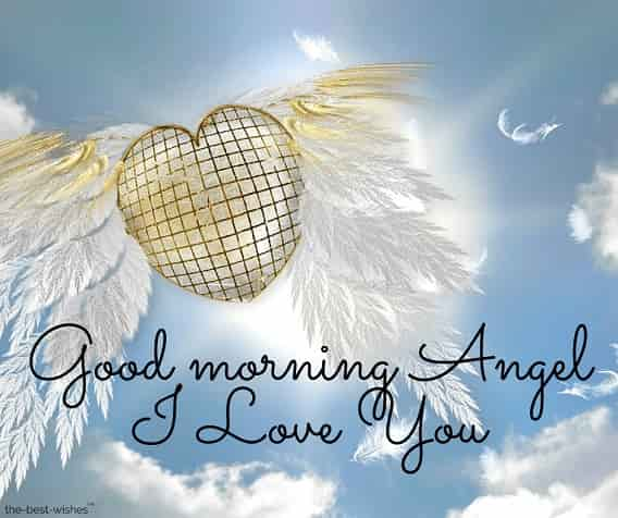 pictures of good morning angel