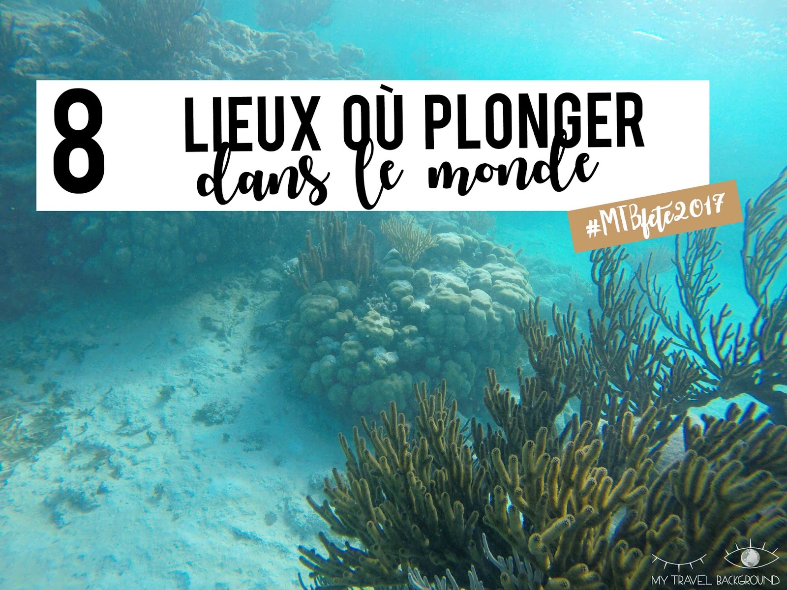 My Travel Background : 8 lieux où plonger dans le monde