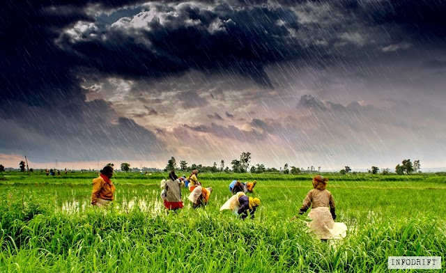 A golden gift for farmers: now power holding officials are seriously setting up the weather forecasting goals for Indian farmers to cope up with daily issues... just wait for 2020