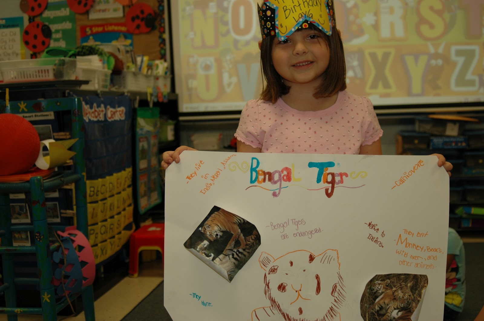 Kindergarten Stars Animal Research Projects