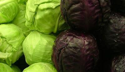 Kubis hijau vs ungu