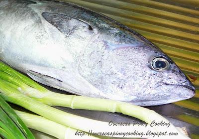 Paksiw sa Gata, Ginataang Tulingan - Ingredients
