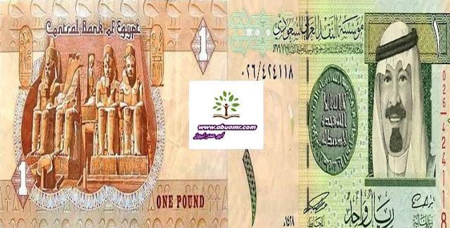 سعر الريال السعودي,سعر الريال القطري,سعر الريال السعودي اليوم,سعر الريال السعودى اليوم,سعر الريال اليوم فى مصر,الجنيه,الريال,سعر اليورو,سعر الريال بالجنيه,العملات,سعر الريال مقابل اليورو,سعر الريال مقابل الدولار,الدولار