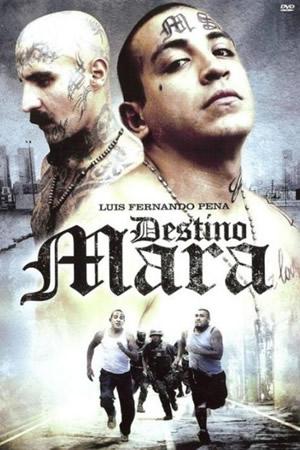 DESTINO MARA (2010) Ver Online - Español latino