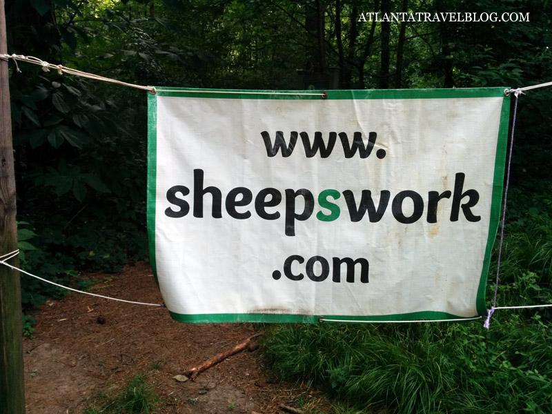 Овцы на службе человека