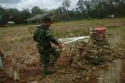 Anggota Koramil 416-04 Pulau Temiang Kembali Dampingi Petani