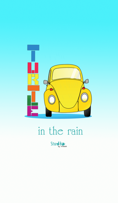 Turtle in the rain