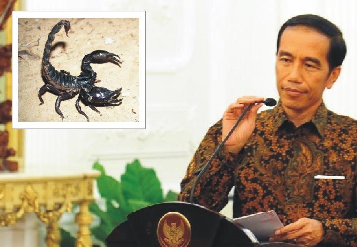Jokowi racun kalajengking