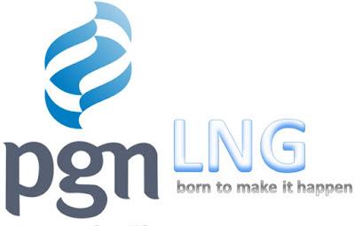 PT PGN LNG