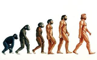 testo e immagini sull'evoluzione nella preistoria