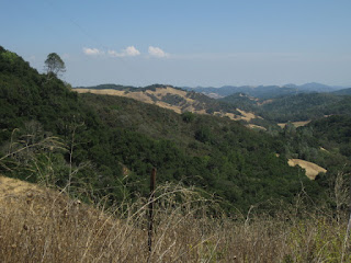 View to the northeast from the summit of Santa Rosa Creek Road, east of Cambria, California