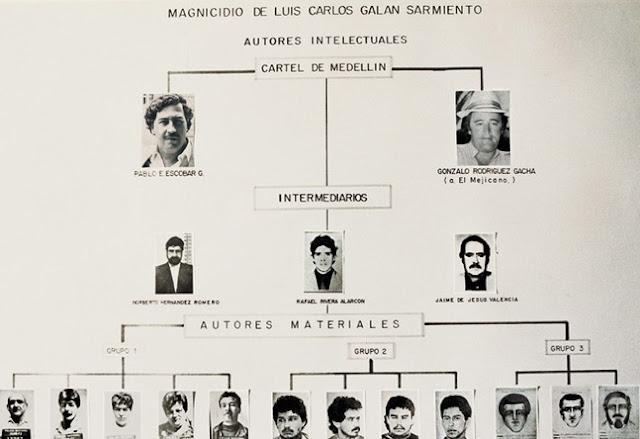 Medellin Karteli Örgüt Şeması