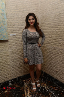 Actress Shurabhi Pictures in Short Dress at Vivo Global's V5 Smartphone Launch  0029