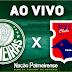 Jogo Paraná x Palmeiras Ao Vivo 18/11/2018