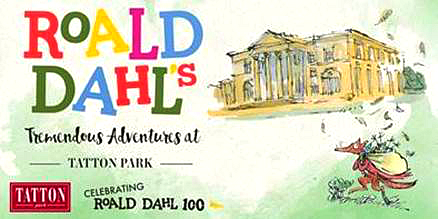 Roald Dahl Tatton Park Event, Roald Dahl 100 celebration, How to Spot a Witch