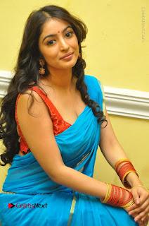 Telugu Actress Vaibhavi Stills in Blue Saree at Www.Meena Bazaar Movie Opening  0053.JPG