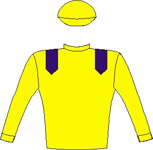 Samuari Blade - Silks - Vodacom Durban July 2016 - Yellow, royal blue epaulettes, yellow sleeves and cap