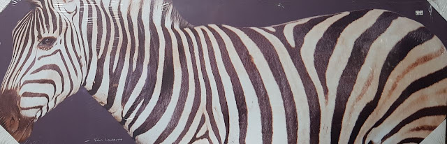 Paintings Canvas African Curio Zebra