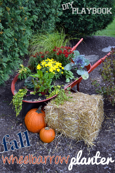 fall wheelbarrow planter