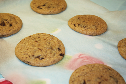6 cookies on baking parchment, fresh from the oven and perfectly round