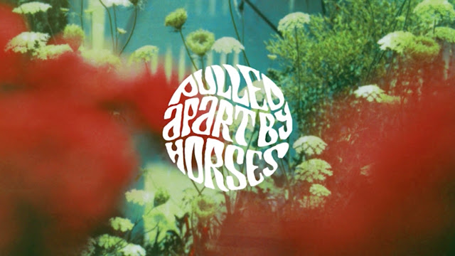 Pulled Apart By Horses The Haze