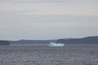 Iceberg Right Ahead.
