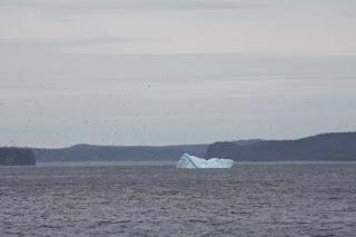Iceberg Right Ahead.