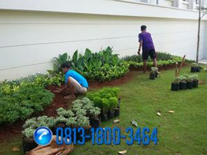 Tukang Taman di Ciganjur,Jasa Tukang Taman Murah di Ciganjur,Jasa Pembuatan Taman di Ciganjur,Tukang Taman dan Kolam Minimalis di Ciganjur