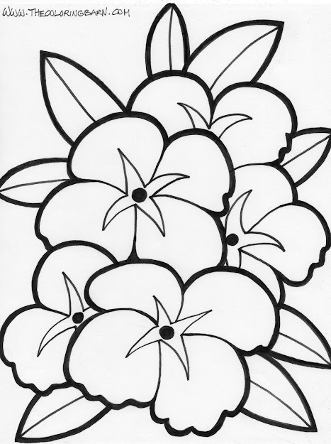 Appealing Coloring Pages Draw Easy Flowers Flower Template To Print  Printable Simple Sheets Pictures Flower Full