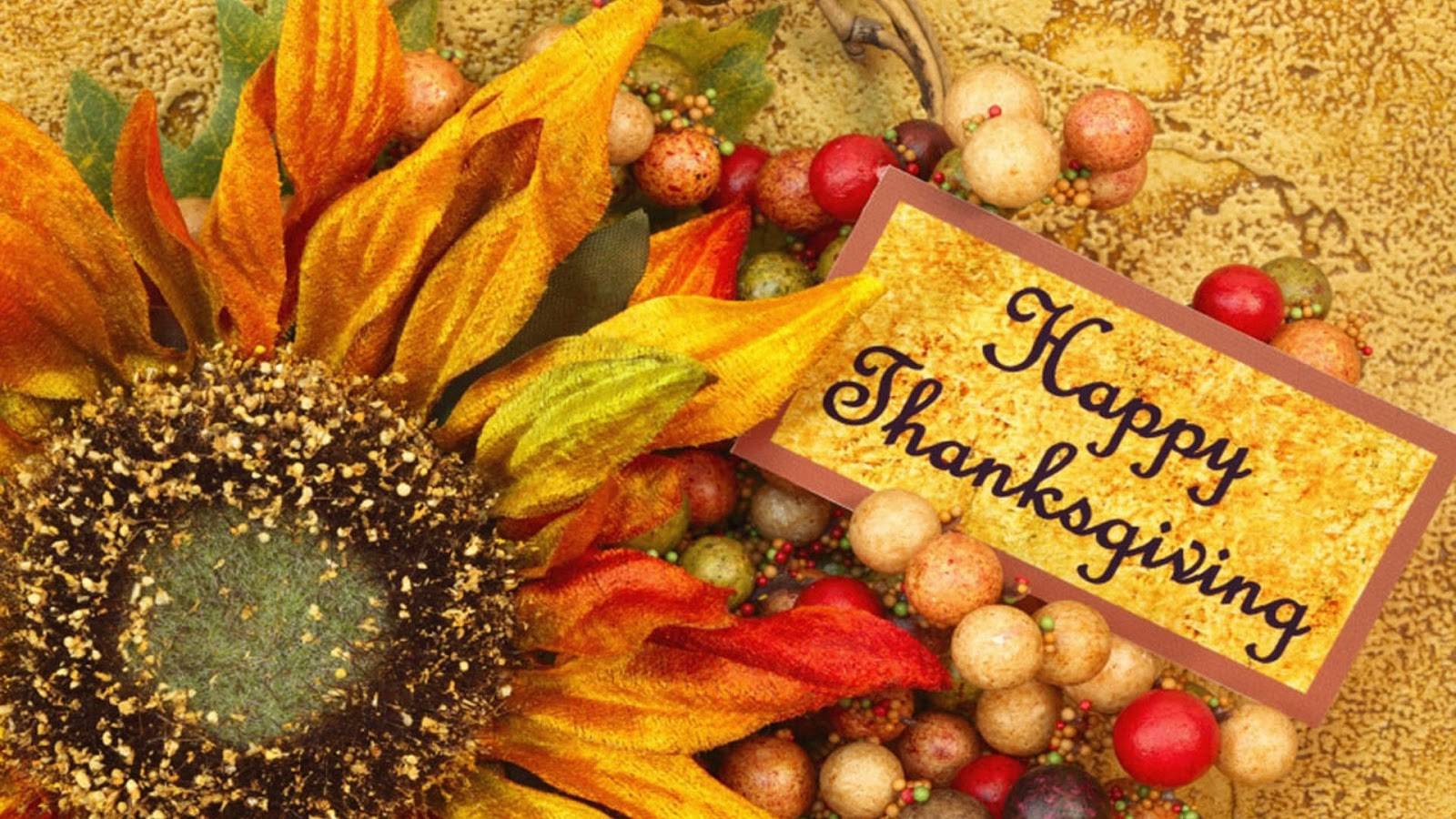 Unique and best 30 wishing quotes wishing message and happy thanksgiving day 2016 image kristyandbryce Gallery