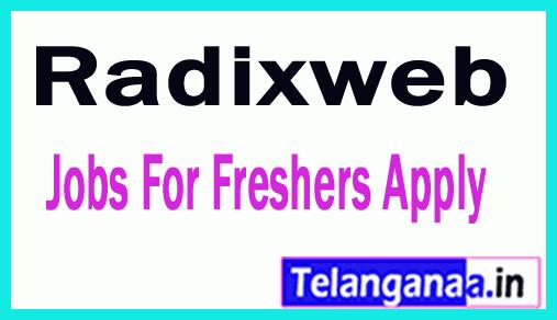 Radix Recruitment Jobs For Freshers Apply