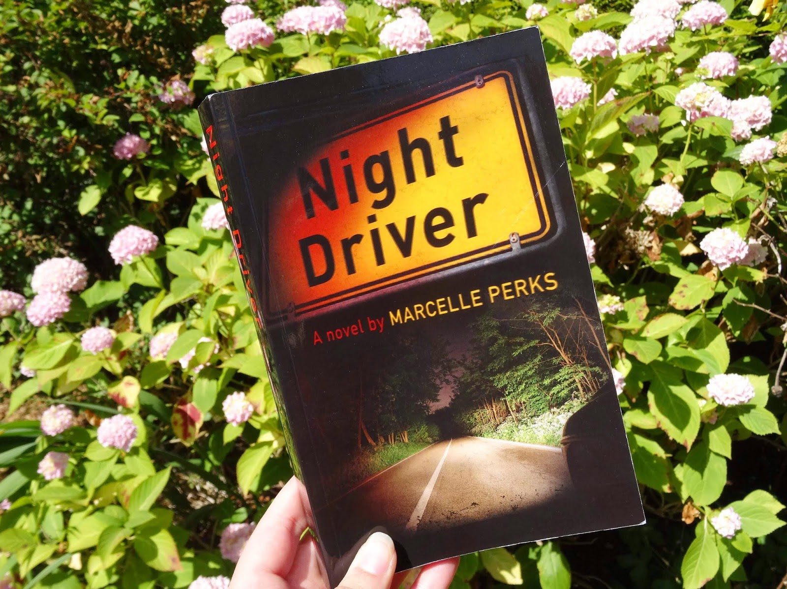Night Driver by Marcelle Perks Front Cover