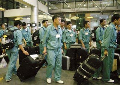 Tuyển 100 nam đi xuất khẩu lao động Mỹ