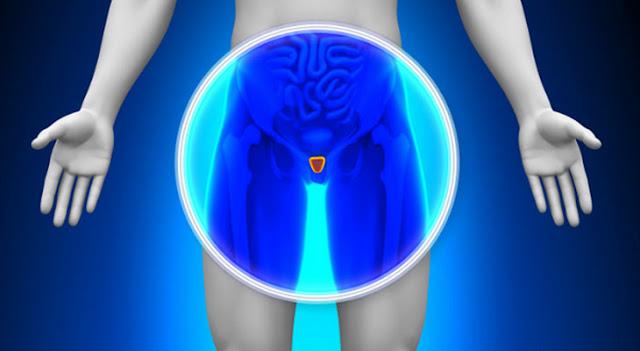 Instituto Weizmann desenvolve tratamento para o câncer de próstata