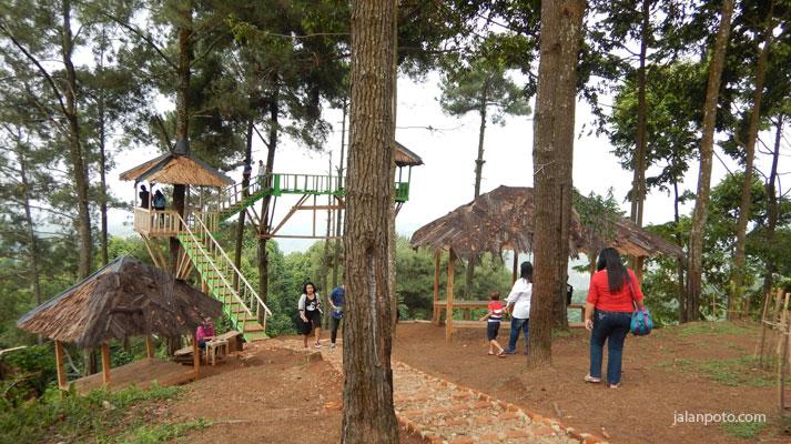 Wisata Bogor dengan rumah pohon di pabangbon