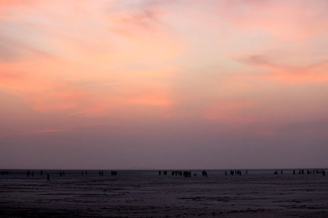 Sunset on the Rann of Kutch