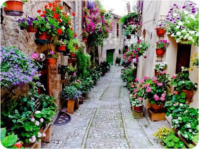 Pasu Bunga Kreatif