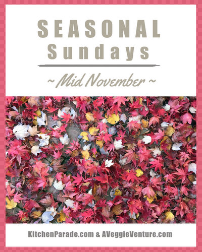 Seasonal Sundays ♥ KitchenParade.com, preparing for Thanksgiving, a seasonal collection of recipes and ideas.
